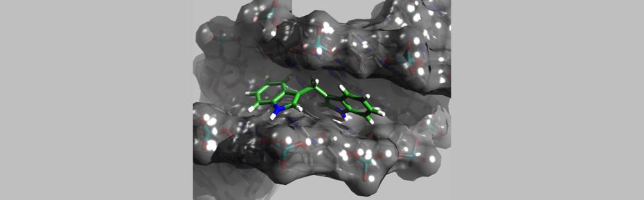 "Desideri Lab ""Ab-Initio investigation of Leishmania donovani Topoisomerase Inhibitors"""